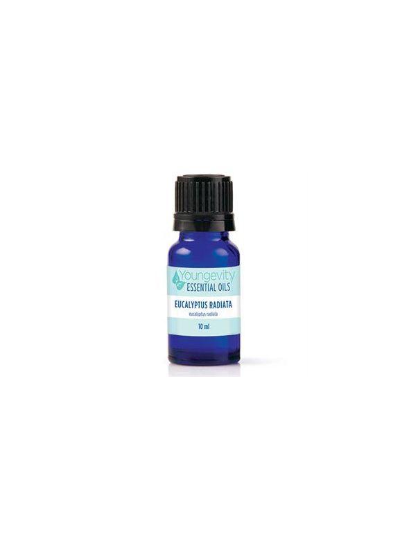 Eucalyptus Radiata Essential Oil - 10ml